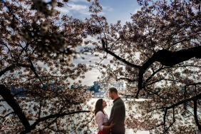Engagement Photography | Tidal Basin, Washington, DC - Couple framed by Cherry Blossom trees in DC by the Tidal Basin at sunrise.