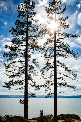 Engagement Photo Sessions | Lake Tahoe engagement photo of a man and woman standing in front of the lake and between two large pine trees.