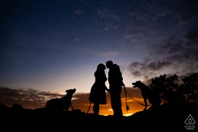 Garden of the Gods, Colorado Springs, Colorado engagement photos - A couple and their two dogs share a romantic sunset after misbehaving all day
