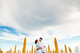 Grado, Italy pre wedding couple portraits | Among the umbrellas