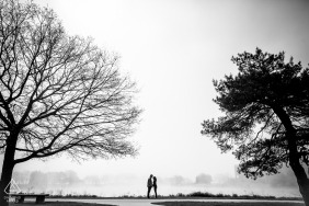 Illinois black and white engagement portraits between two large trees