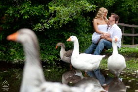 West Hartford, Connecticut portrait session with an engaged Couple sitting with geese