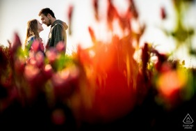 engaged couple portrait session In the blooming fields of Ivančice
