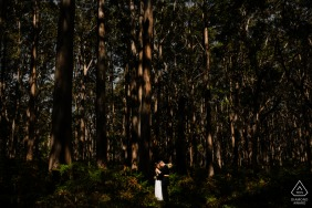 A quiet minute together for this engaged couple during a portrait shoot in the Boranup Forest
