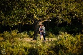 Heide Huizen Loveshoot portraits de fiançailles de couple avec un arbre géant