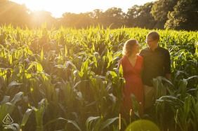 Great Brook Farm State Park, Carlisle, Massachusetts | Engagement Photo of a couple in a field of corn at sunset