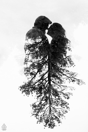 Artistic CO engagement photo shoot at Castlewood Canyon, Colorado of  a couple with a ponderosa pine melting into their silhouette