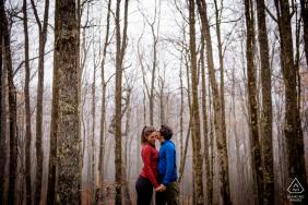 Dolly Sods - West Virginia vor der Hochzeit an einem nebligen Nachmittag im Wald