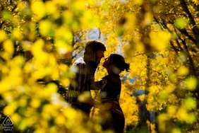 Pinegree Park, Colorado romantic couple session surrounded by aspen trees in peak Fall colors on a hike