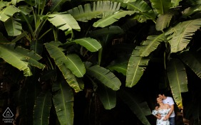 Atalaia, Alagoas pre - wed image with the soon to be Bride and groom smile among leaves of a tree