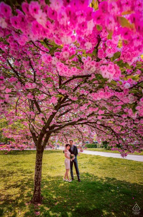 Sofia environmental engagement e-session of a couple under a blooming tree
