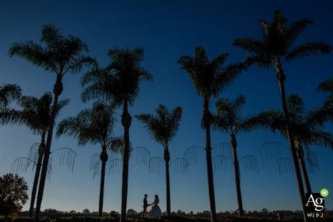 Photographie de mariage à San Diego | L'image contient: prise de vue à distance, mariée, marié, portrait, palmiers, à l'extérieur, tenant par la main