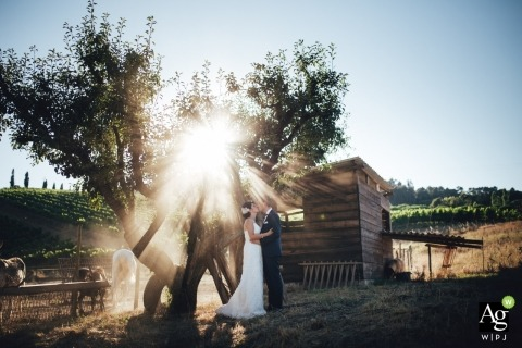 The sun shines its approval on a wedding in Porto as the couple take wedding pics outdoors