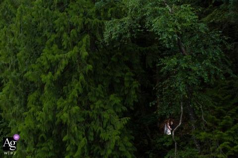 Photos de mariage artistique de Kelowna de jeunes mariés dans la forêt verte