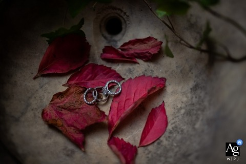 Florence artistic creative photography detail of rings in red leaves