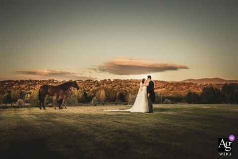 creative and artistic wedding pictures by Playa del Carmen photographer | bride and groom with horses