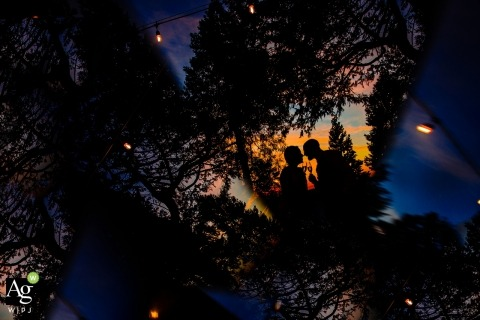 Sacramento Wedding Photographer | Image contains: bride, groom, portrait, silhouette, trees, sunset