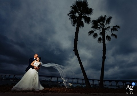 Sacramento creative wedding portrait photography of bride and groom with palm trees