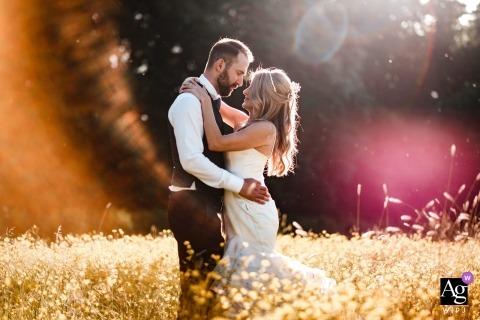 Northbrook Park wedding portrait in a sunny field with the bride and groom