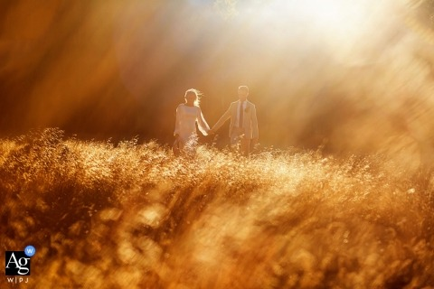 Lake Tahoe wedding day couple portrait in the field with golden sun and flares