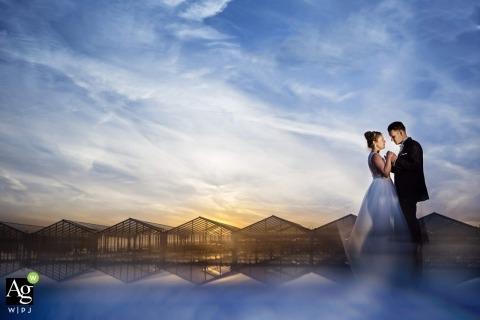 Damon Pijlman ist ein künstlerischer Hochzeitsfotograf für Zuid Holland