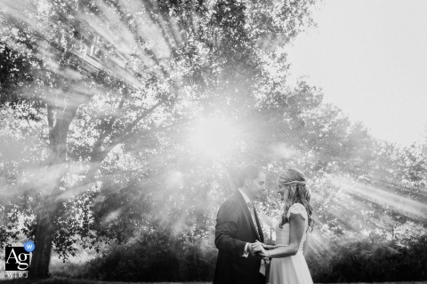 Biscay creative wedding portrait photography in the sun and trees with bride and groom