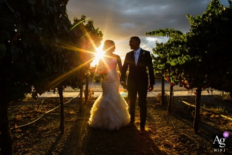 Chris Shum is an artistic wedding photographer for California
