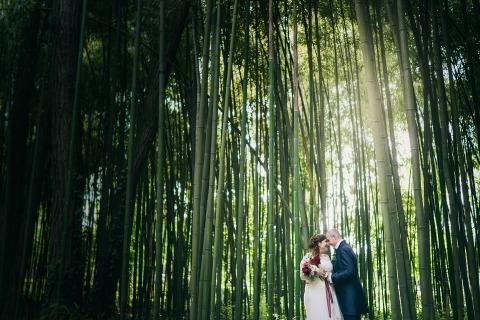 villa di bagno, mantua , bambu garden