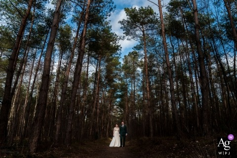 Beaufort Huis Austerlitz wedding photography | The bride and groom are standing in a beautiful forest with a blue sky.