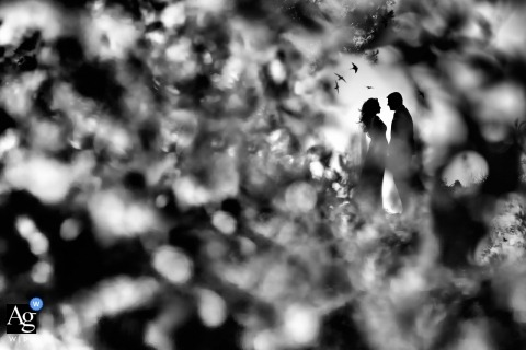 Wedding photographer for the Grand Resort Lagonissi, Greece | artistic Black and white portrait of the bride and groom