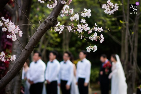 China wedding day photography | Waiting for the ceremony under the blossoms outdoors