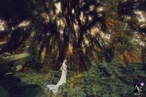 Mango Gu is an artistic wedding photographer for