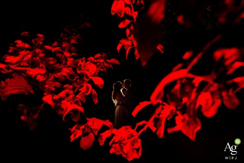 Fotografia ślubna na podwórku w Boulder, CO | Ostatni portret dnia ślubu w Boulder.