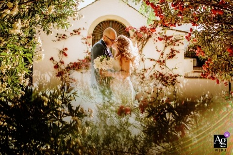 Hacienda San Rafael Wedding Couple Portrait - Bride and groom at a sunflower field