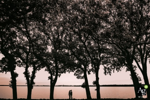 Bishop's Bay Country Club, Middleton, Wisconsin wedding venue photography | Silhouette of couple under trees during first look