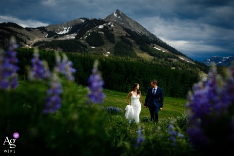 A portrait of the wedding couple walking through a field of lupine shortly after their wedding ceremony at Uley's Cabin in Crested Butte