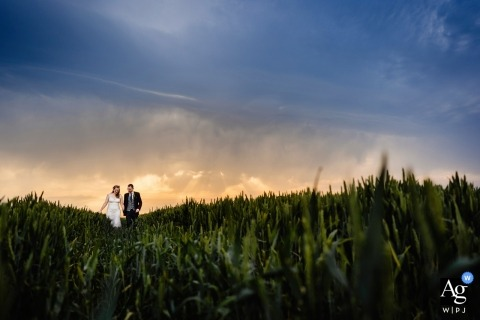 The Normans, YorkPortrait of a Bride and Groom walking through a field at sunset