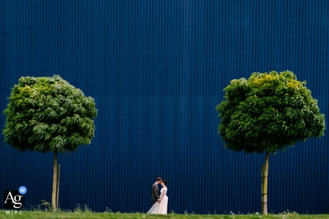 Belgium wedding portrait of a couple against a blue building, framed between two trees.