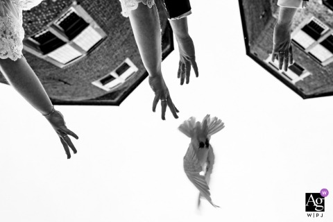 Wedding detail image of a dove being released, hands and tops of buildings.