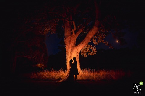 Stirlingshire wedding photographer | Scotland Reception Portrait of the B&G shot silhouetted against tree at night with a gelled flash aimed at it.