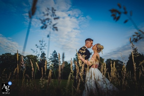 Wedding couple portrait shot through long grass with blue skies. Lit by off camera flash.