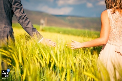 castello di montignano wedding image of a bride and groom walking through a field of wheat