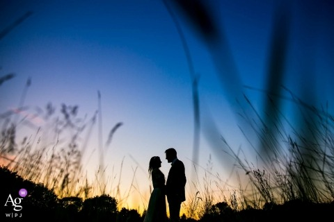 Northbrook Park, Surrey wedding sunset silhouette portrait of the newlyweds in tall grasses