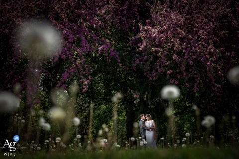 The Capitol Room wedding venue photos | Couple in the park during portrait session on wedding day