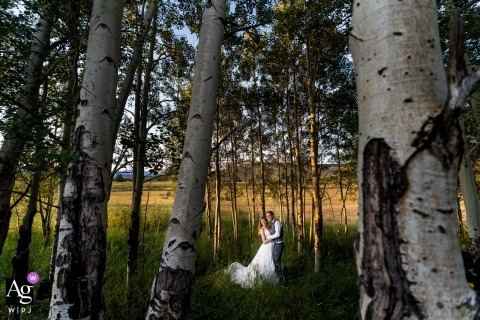 Strawberry Creek Ranch wedding day images - The sunset glow in an aspen grove. Bride and groom on wedding day.
