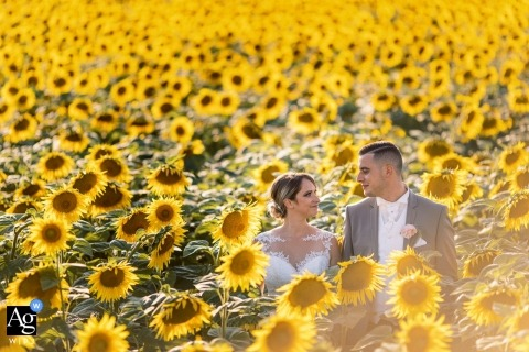 Provence wedding pictures | A couple in the yellow flowers with bright sunshine