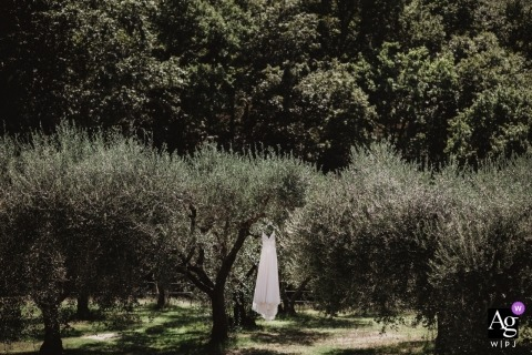 Villa Scopetello wedding day photography - Picture of bride's Dress hanging in the trees