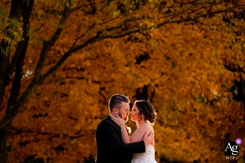 Great Marsh Estate, Bealeton VA wedding photo | Waist up portrait of the bride and groom, backlit, in front of a tree in peak autumnal color.