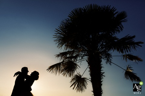 Cannes, French Riviera wedding photography | Couple silhouette and a palm tree