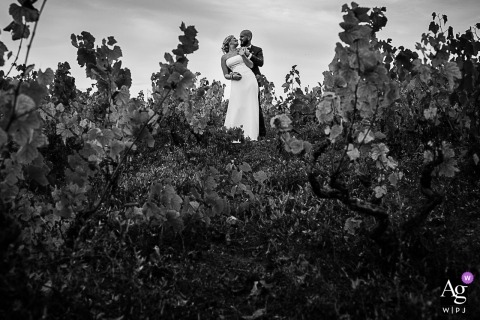 France Wedding Picture after the Ceremony - Bride and groom in the vineyard